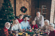 canvas print picture - Photo of full big family gathering sit dinner table multi-generation reunion posing for holiday portrait in newyear atmosphere decor living room evergreen tree indoors