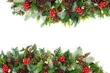 Winter And Christmas Background Border With Holly, Snow Covered Spruce Fir, Mistletoe, Cedar And Ivy Leaves With Pine Cones On White With Copy Space.