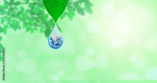 Fototapeta Ecology Concept : Planet earth globe in water drop with green natural in background. (Elements of this image furnished by NASA.) obraz na płótnie