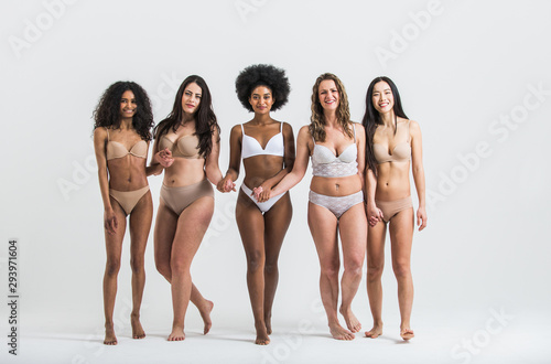 Group of women with different body and ethnicity posing together to show the woman power and strength. Curvy and skinny kind of female body concept - 293971604