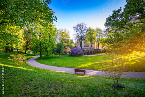 Obraz Spring view in Letna Park, Prague, Czech Republic. Spring in Prague (Praha), beautiful Letna park (Letenske sady) in sunlight, sunny landscape, popular tourist destination, Prague, Czech Republic - fototapety do salonu