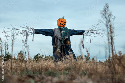Obraz na plátně A scary scarecrow with a halloween pumpkin head in a field in cloudy weather