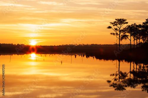 Foto auf AluDibond Orange Glowing sunset into pine forest and autumn lake.