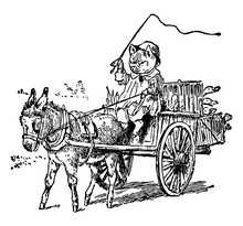 Pig Driving Car Pull By Donkey, Vintage Illustration
