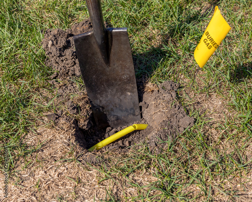 Fotografía Damaged plastic natural gas line from digging hole in soil in yard with shovel