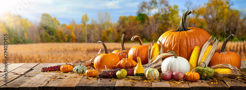 Stampa su Tela  Wooden Harvest Table With Pumpkins Corncobs Gourds And Apples With Field Trees A