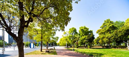 お台場の遊歩道(日本科学未来館前)
