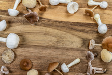 Mushroom Autumn Frame. Collection Of White And Brown Tiny Mushrooms On Wood Background.