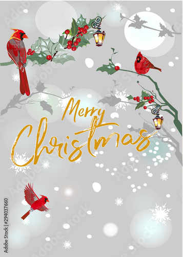 Fototapety, obrazy: Christmas background with Christmas tree garlands, decorated with birds, Red Cardinal,  ribbons, lights. Hand drawn vector illustration