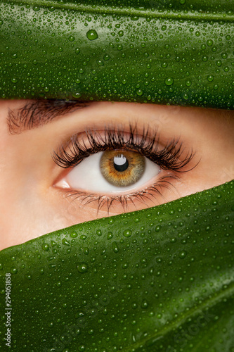 Fotografía  Beautiful Woman with long lashes on the background of a leaf of monstera with water droplets