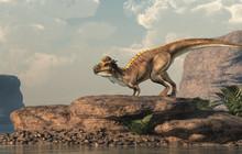 A Brown Pachycephalosaurus Sta...