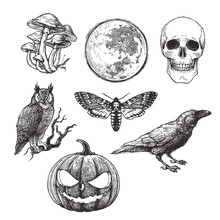 Vector Vintage Set Of Halloween Symbols In Engraving Style. Hand Drawn Illustration With Skull, Pumpkin, Full Moon, Raven, Death Head Moth And Owl Isolated On White