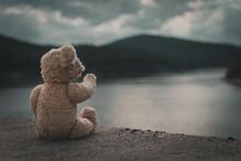 Teddybär Schaut Von Staumauer...