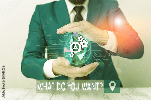 Conceptual hand writing showing What Do You Want Question Wallpaper Mural