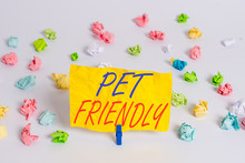 Word Writing Text Pet Friendly...