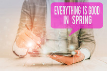 Word Writing Text Everything Is Good In Spring. Business Photo Showcasing Happiness For The Season Enjoy Nature Female Human Wear Formal Work Suit Presenting Presentation Use Smart Device