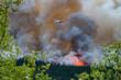 Waldbrand Helis im Einsatz