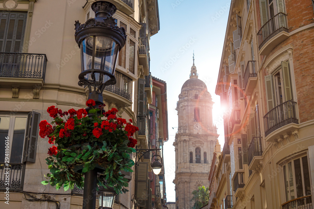 bell tower of the Incarnation Catedral at the end of an narrow old town street in Malaga spain with sun and a geranium flower