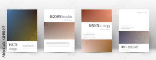 Платно  Flyer layout. Minimalistic popular template for Br