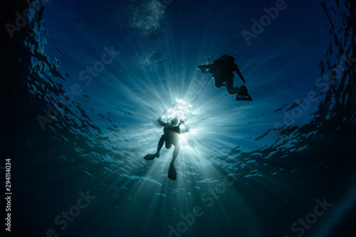 Divers Canvas Print