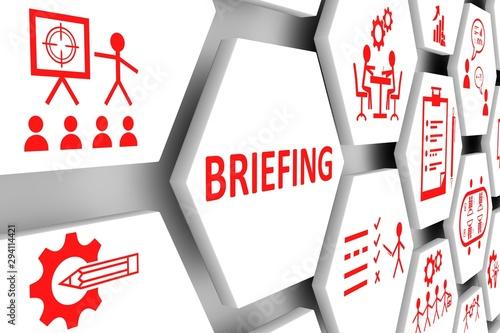 Obraz BRIEFING concept cell background 3d illustration - fototapety do salonu