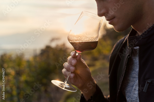 Obraz na plátně close up of a young man tasting red wine in a vineyard during sunset
