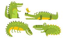 Set Of Cartoon Green Crocodile...
