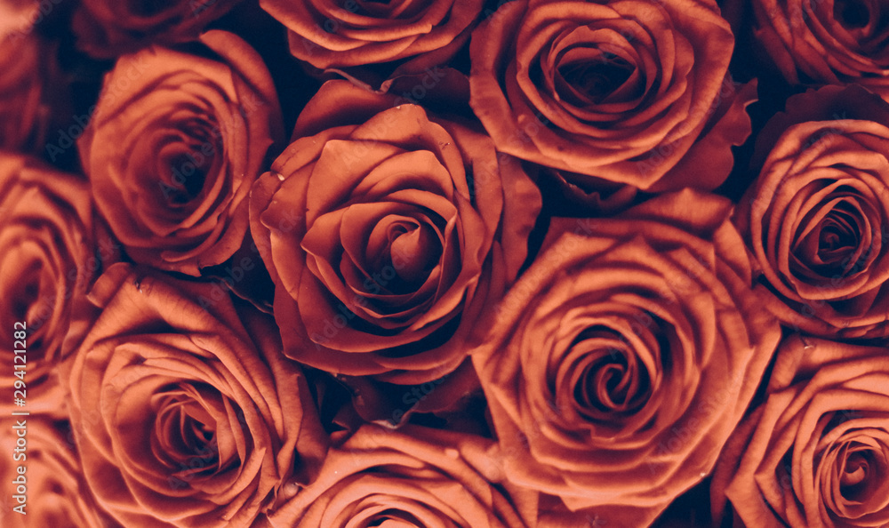 Fototapeta Vintage luxury bouquet of orange roses, flowers in bloom as floral holiday background
