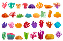 Coral Icons Set. Cartoon Set Of Coral Vector Icons For Web Design