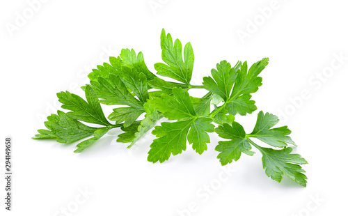Fotomural fresh parsley herb isolated on white background
