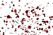 Red Colorful Petals Rose Flyin...