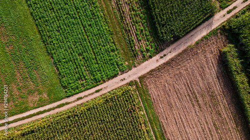 Obraz Countryside Road Between Farmland Fields. Aerial Drone Top Down View - fototapety do salonu