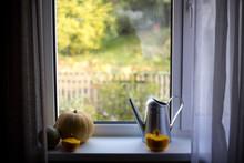 Little Orange Pumpkins On The Windowsill, It Is Sunny Outside.