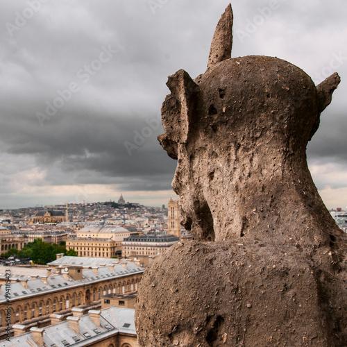 Photo Paris skyline with gargoyle