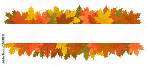 Obraz na plátne Autumn leaves banner, copy space, maple leaf