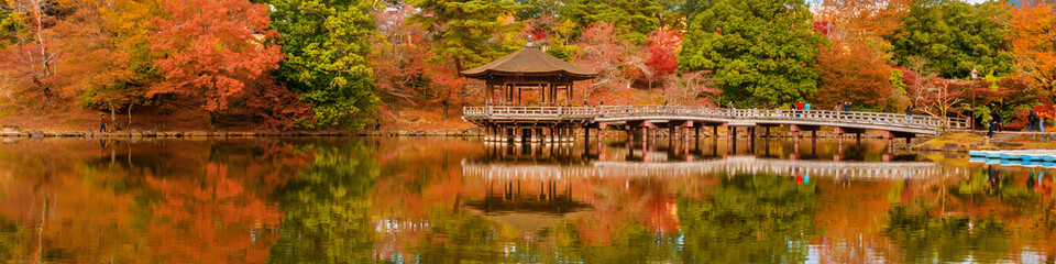Scenic view of Nara public park in autumn, with maple leaves, pond and old or...