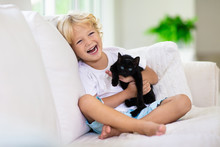 Child Playing With Baby Cat. K...