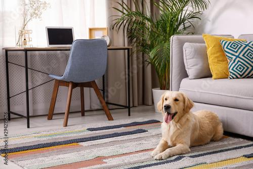 Obraz na płótnie Modern living room interior