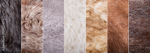 Fotomural collage of fur texture as background