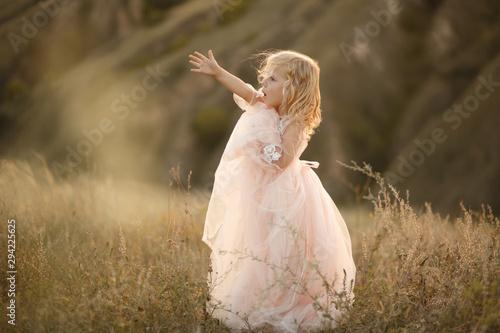 Valokuvatapetti Portrait of a beautiful little princess girl in a pink dress