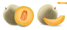 Sweet Melon, Cantaloupe. 3d Realistic Vector Icon