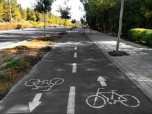 Bicycle Lane In Israel
