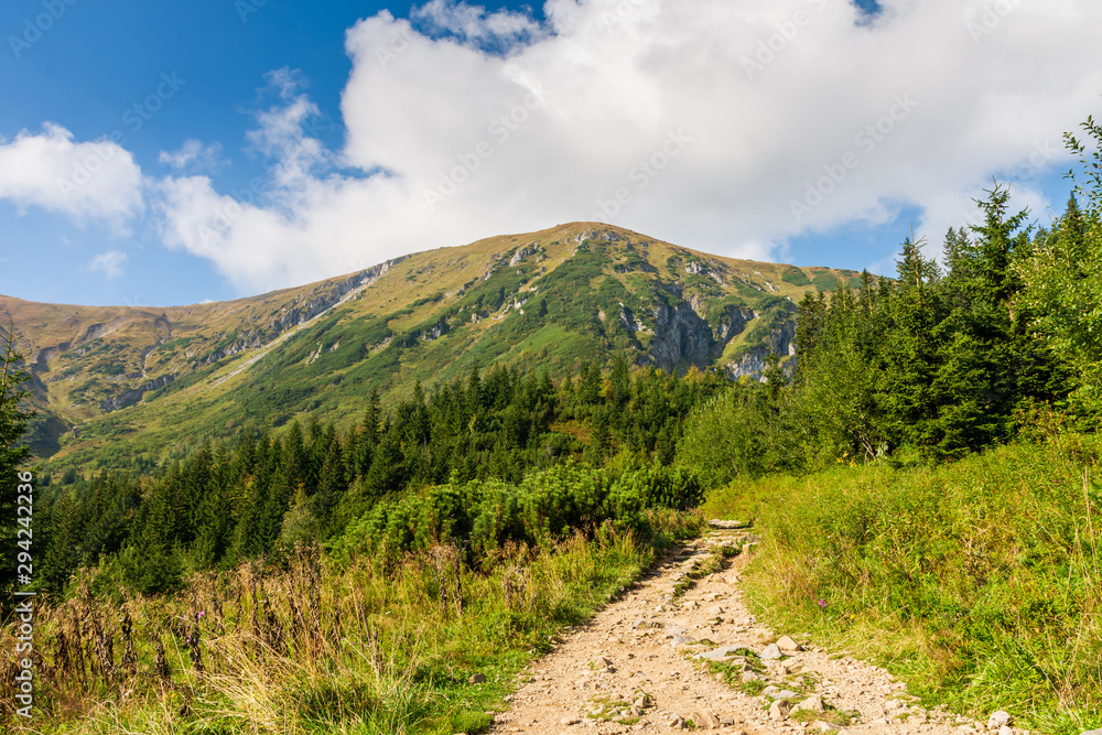 Mountain path leading to the top