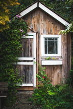 Old Shed With Flowers
