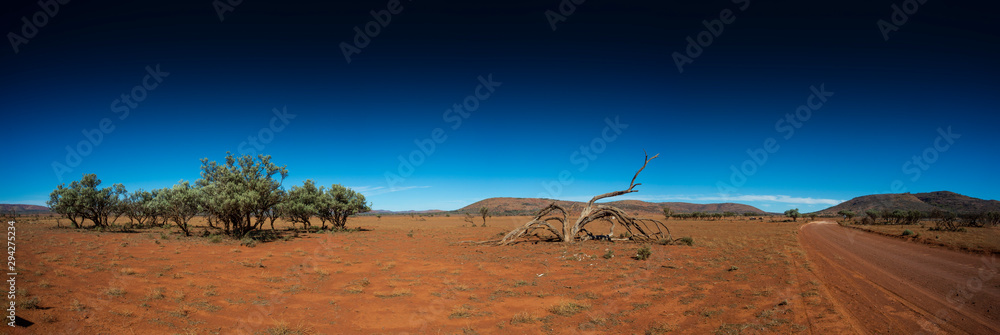 Fototapeta Dead tree, dirt track and mountains in the desert of outback Australia