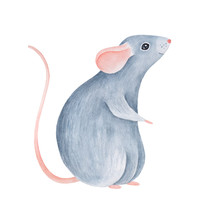 Jolly Little Baby Mouse Charac...