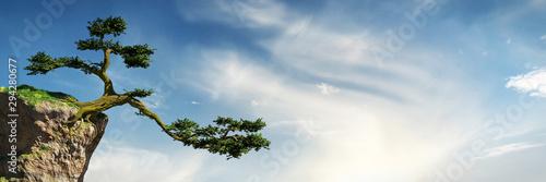 old tree growing on a rock in front of the sky, fantasy landscape Slika na platnu