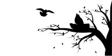 Branch Silhouette Silhouette Nest Illustration