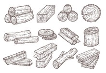 Sketch Lumber. Wood Logs, Trun...