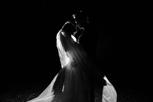 Silhouette Of A Bride And Groo...